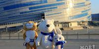3-olimpijskie-simvoly-2014